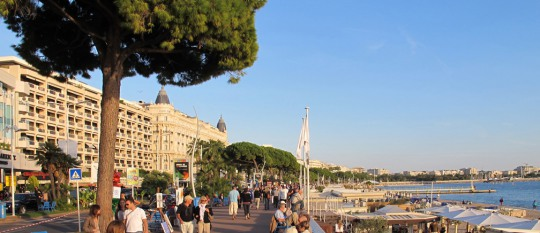 Treat yourself to a wonderful summer in Cannes